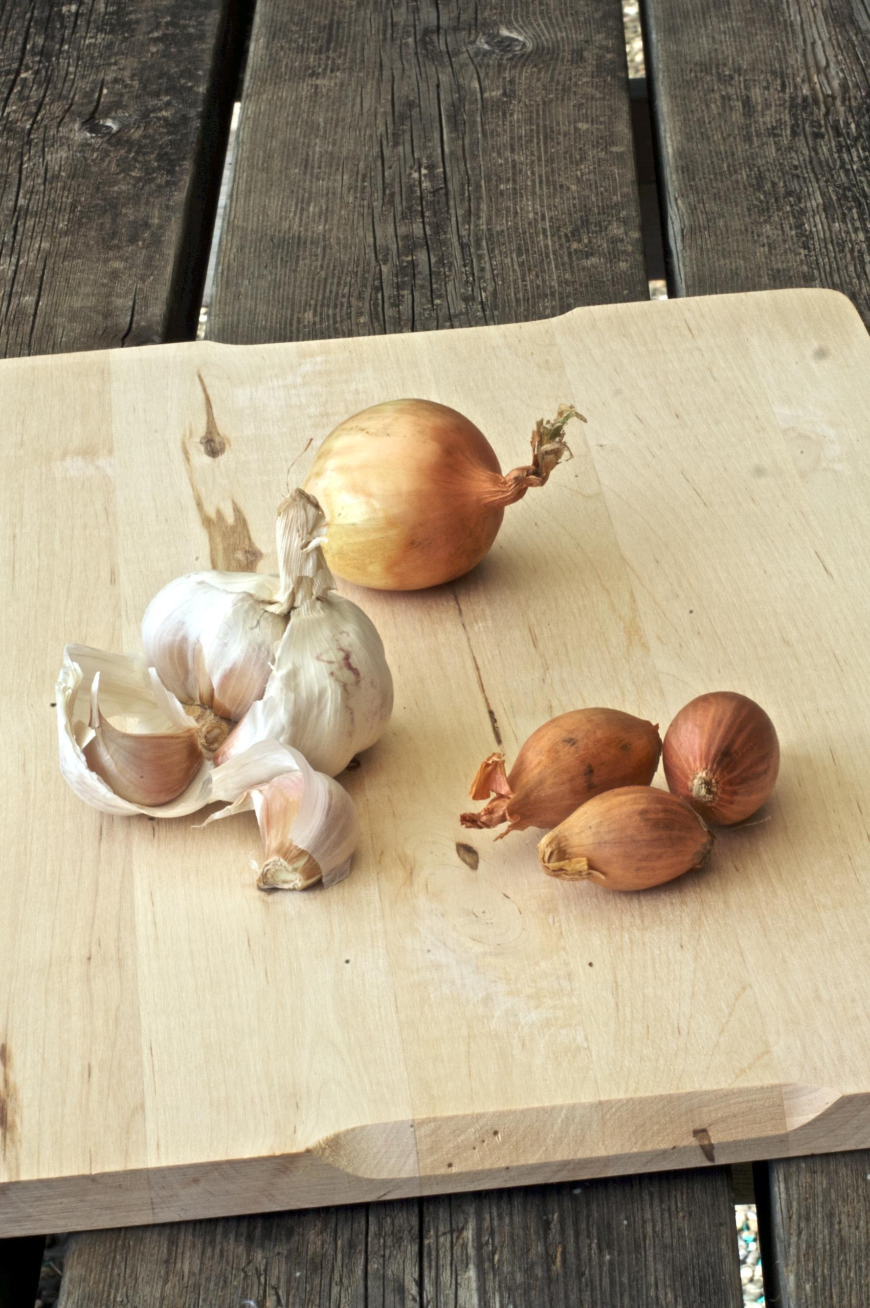cipolle, aglio e scalogni